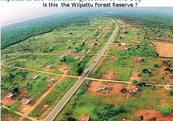 Settlements inside Wilpattu!